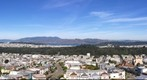 Golden Gate Park View