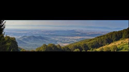 Buntovna view