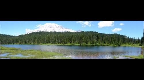 Mt. Rainier July 2014