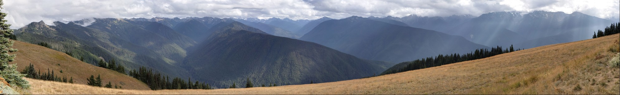 Hurrican Ridge and Mount Olympus