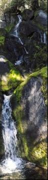Mt Ranier Wonderland Trail Waterfall
