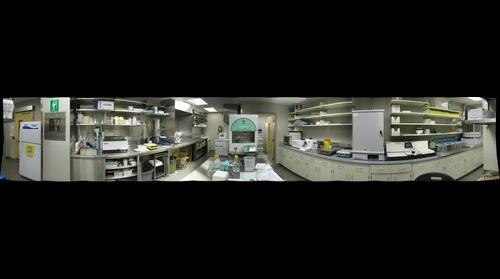 Sunnybrook Imaging Research 3-D Pathology Lab
