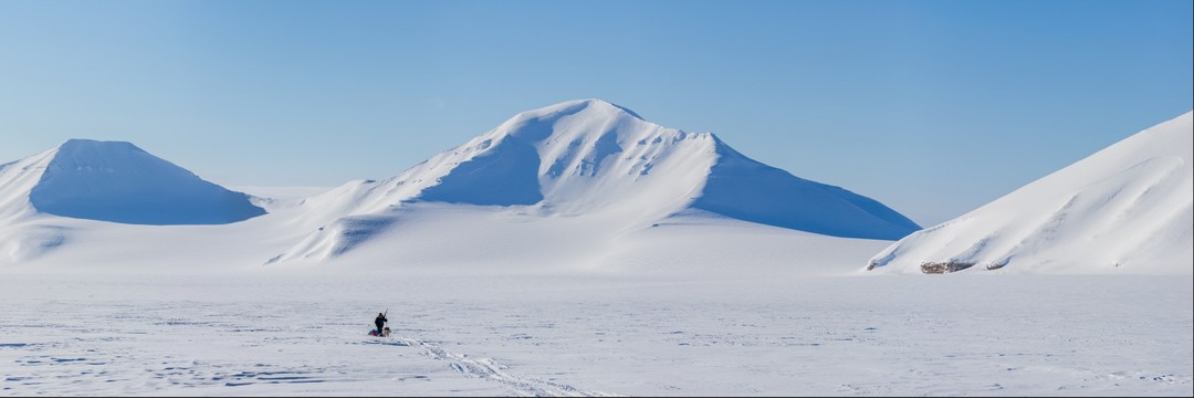 Solitary explorer on winter expedition