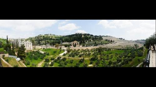 East Jerusalem, Olive Mountain