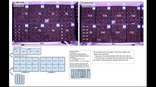 TraitCapture project - Chamber layout
