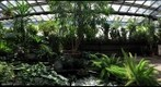 Dow Gardens - The Conservatory Pt. 2 - Midland, Michigan