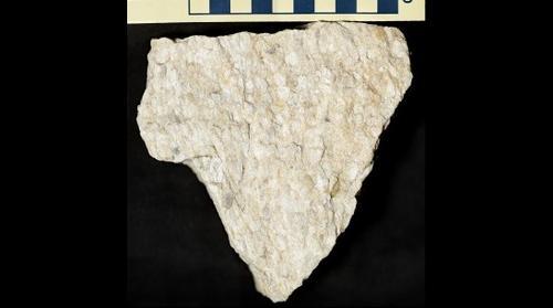 Quartz pebble metaconglomerate (quartzite) of the Silurian Tuscarora Formation, West Virginia