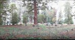 Yoncalla Pioneer Cemetary - overview (k4)