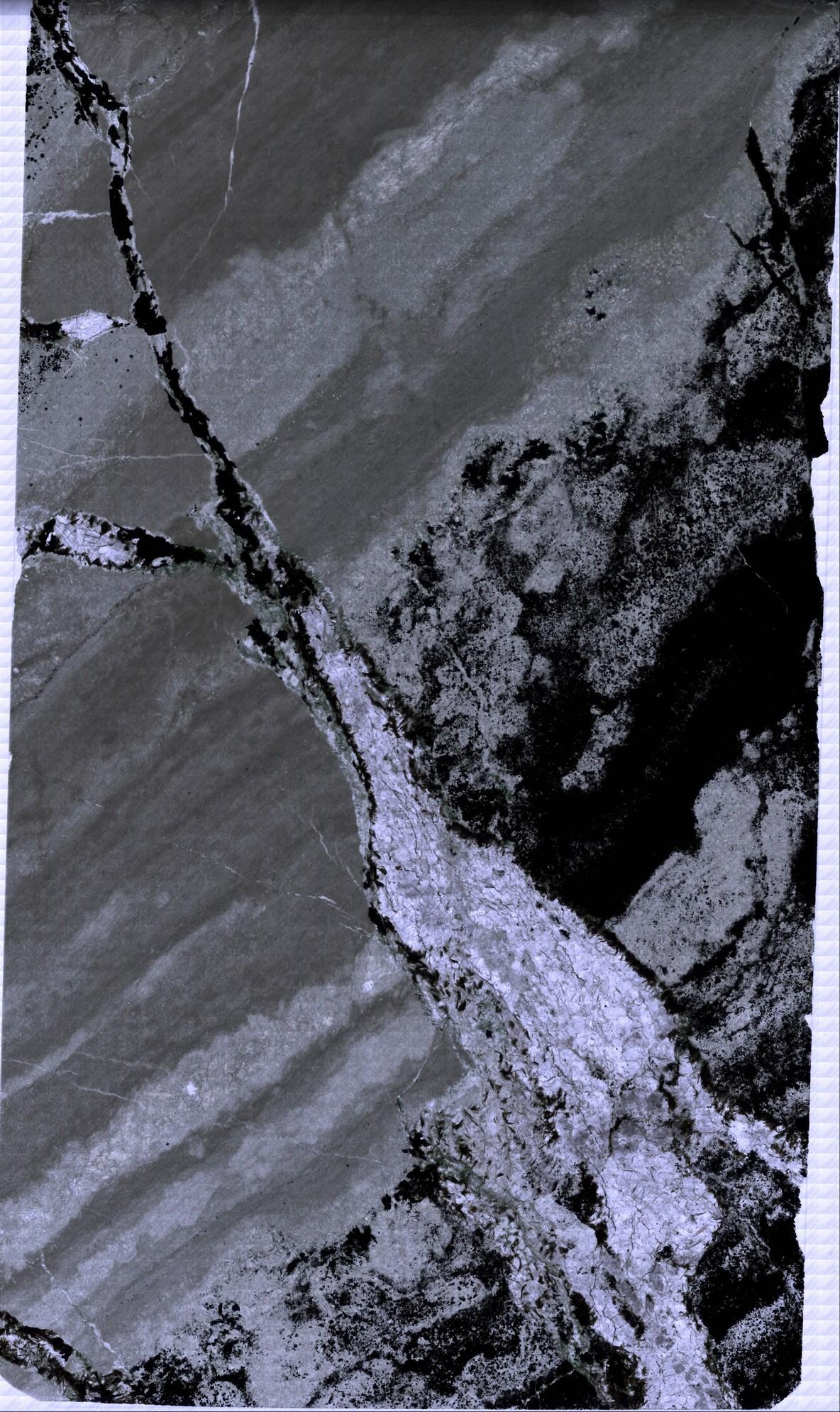 AIDP1 A 100um 20xt