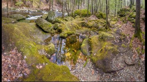 Pool below Gleason Falls