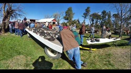 Ramona, KS Farm Auction -