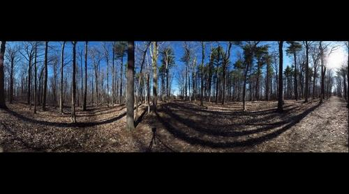 Dairy Bush GigaPan - 342 – April 14 2016