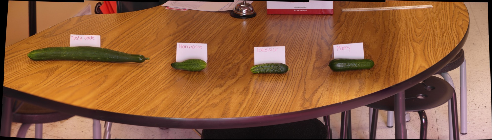 Cucumber Variety 4-29-16