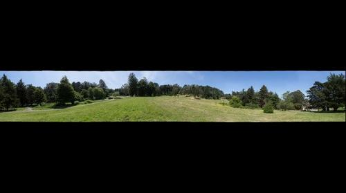 John McLaren Park - Grasslands North of Shelley Drive - 360 degrees - 100mm