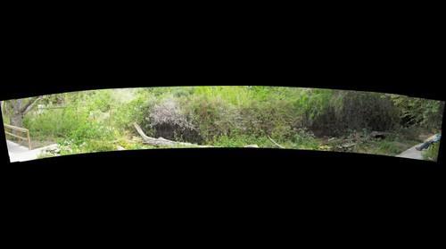 Frontera Audubon Garden