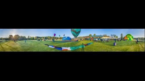 Whole Balloon Field