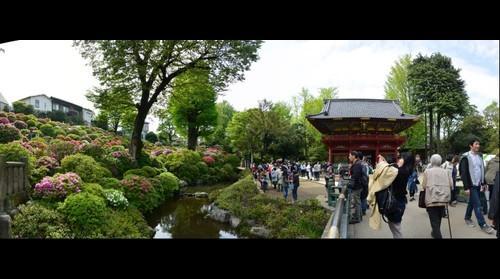 Temple of Nezu-jinja