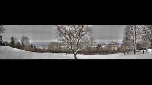 Oslo panorama from Holmenkollen