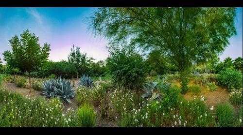 garden southeast
