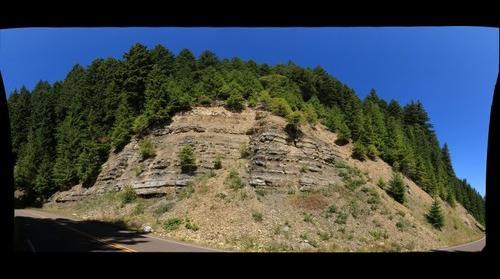 Tyee Formation Turbidites