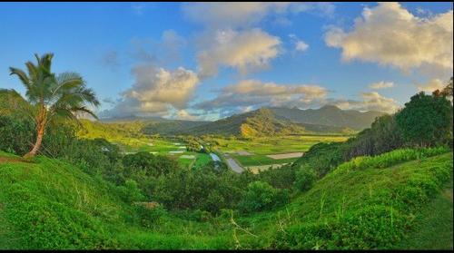 Dreamscape: Hanalei Lookout, Kauai, HI