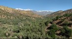 High Atlas from Taroudant (II)