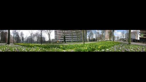 Delft - Voorhofdreef
