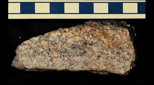 Granitoid Dike from Clear Creek Canyon, Colorado