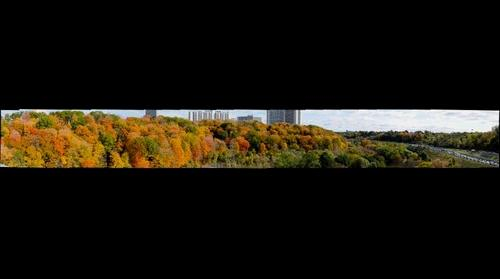 Sliver of the Don Valley