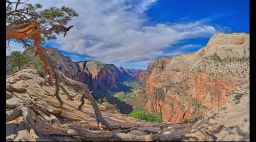Dreamscape: Angels Landing #7, Zion National Park, UT