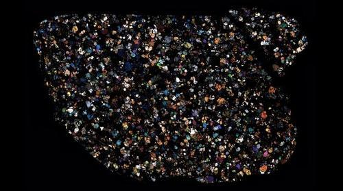 NWA 2871 Meteorite Thin Section