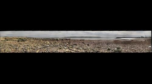 Low tide, Poole Harbour