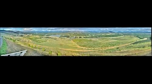 Arboretum Panorama from the Hill Gigavision camera  [2017-03-24-17]