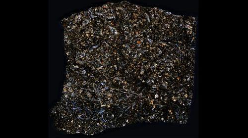 NWA 8159 Meteorite Thin Section