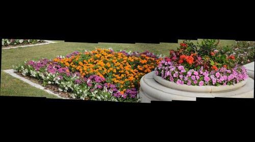 April Flowers in Hermann Park - Houston, Texas