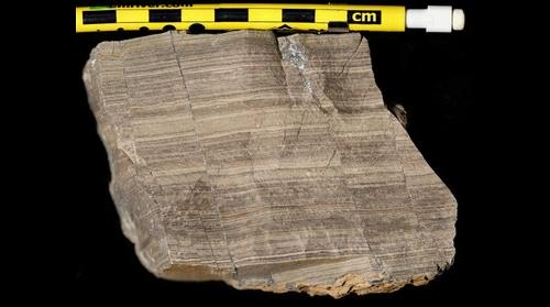 (Annotated) laminated and faulted Tonoloway Formation