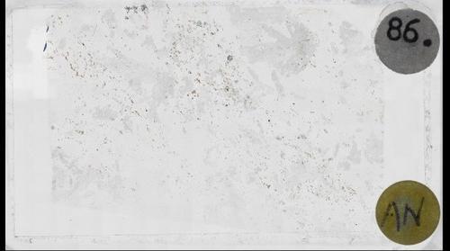 Kyanite Quartzite, Plane Polars
