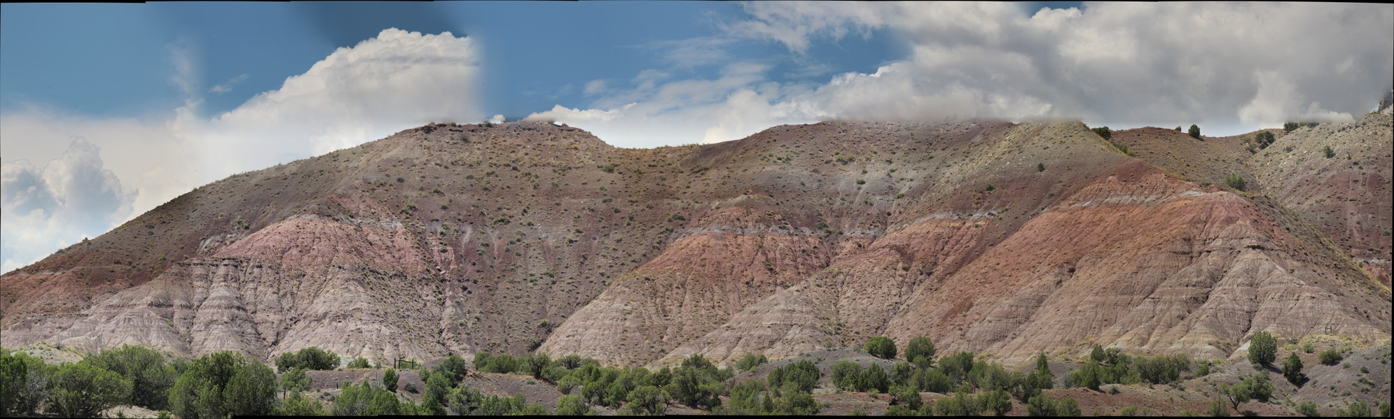 Wasatch Formation: Shire member, CO