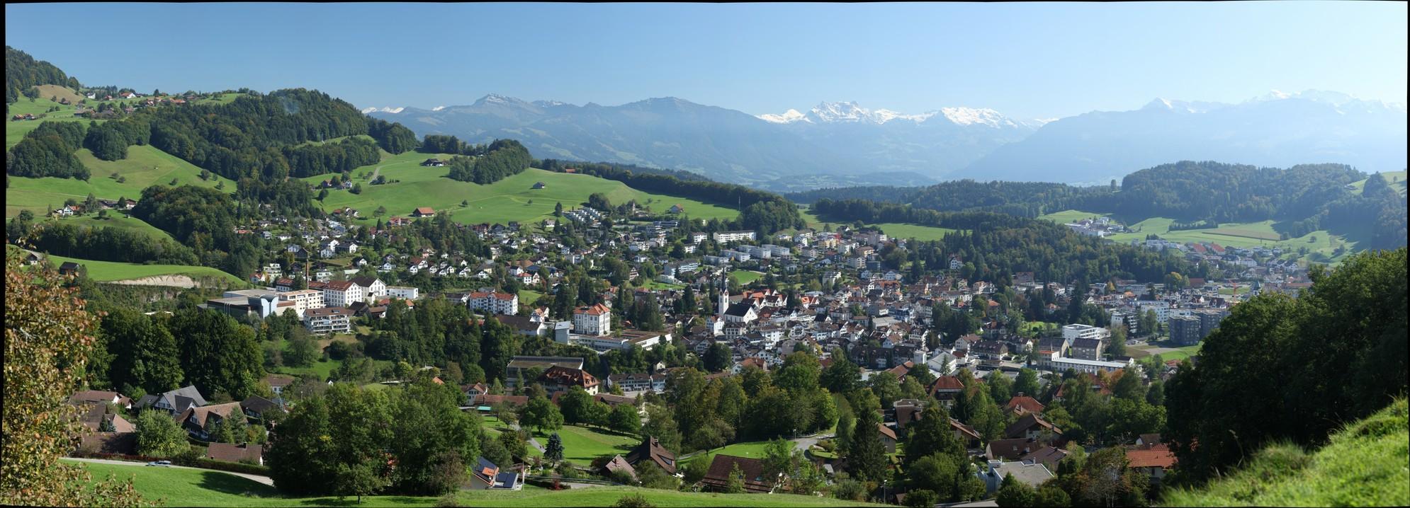 Blick vom Tändler auf Wald im Zürcher Oberland