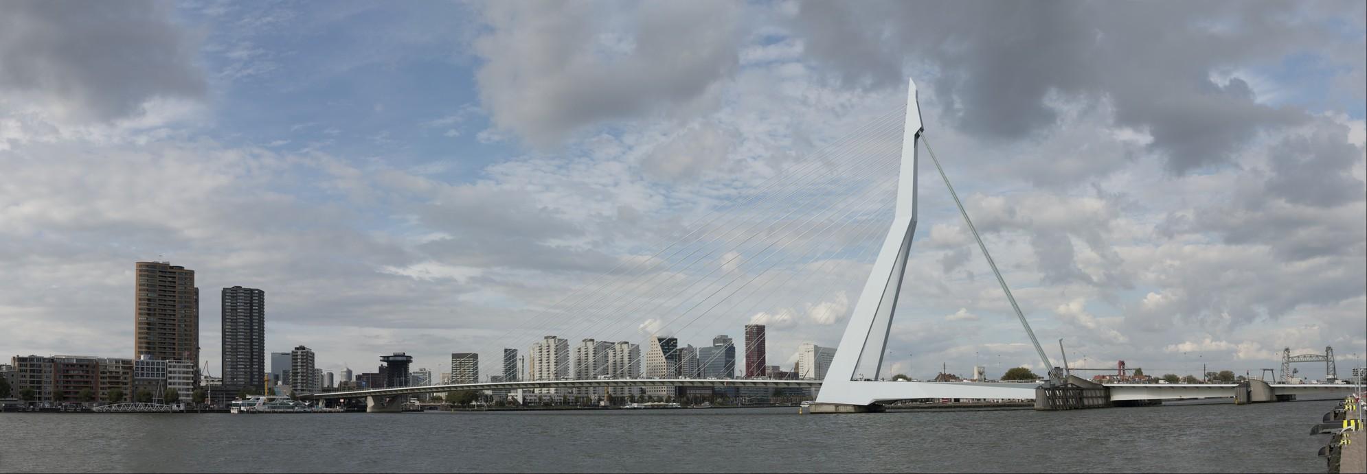 View on the Erasmus bridge in Rotterdam city center