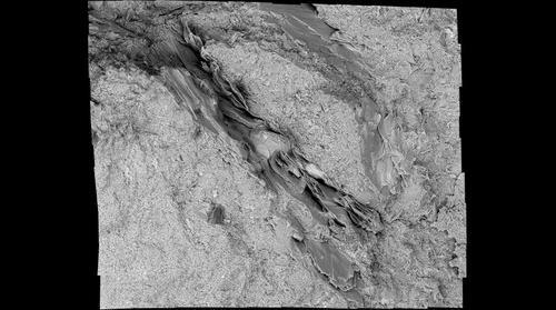 Potential Dropstone in Spechty Kopf Diamictite, 3455x