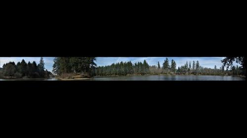 Lacamas Lake #2