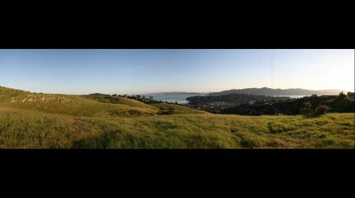 View of San Francisco from Tiburon