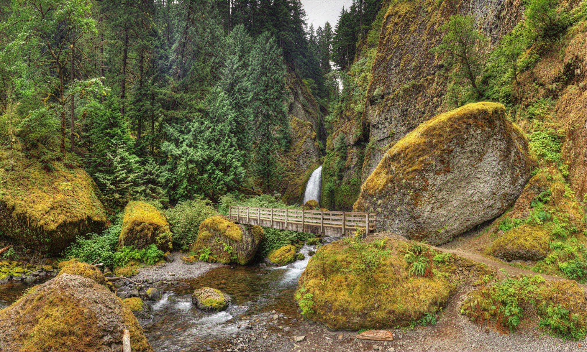 Dreamscape: Wahclella Falls, Columbia River Gorge, OR