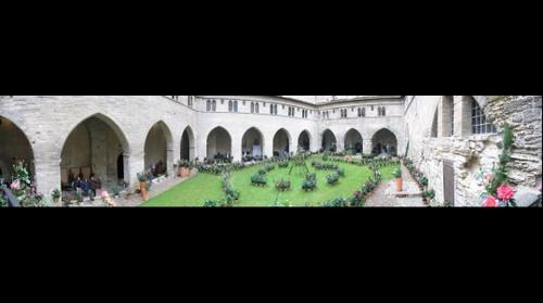 Avignon - Chateau des papes