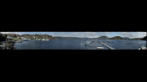 Halsnøy havn