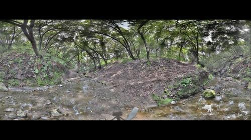 Creek in Garin Park