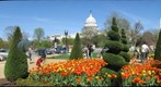 The Nation's Capitol on a Spring day