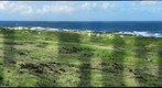 Ka`ena Point, O`ahu
