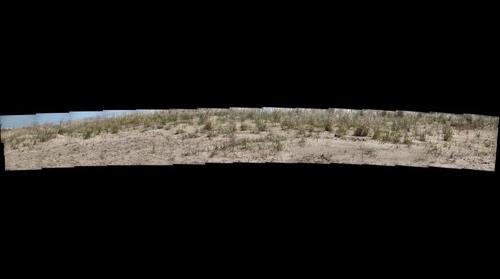 Rainbow Beach Gigapan